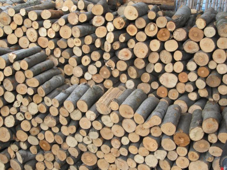 Καύσιμη ξυλεία ελιά